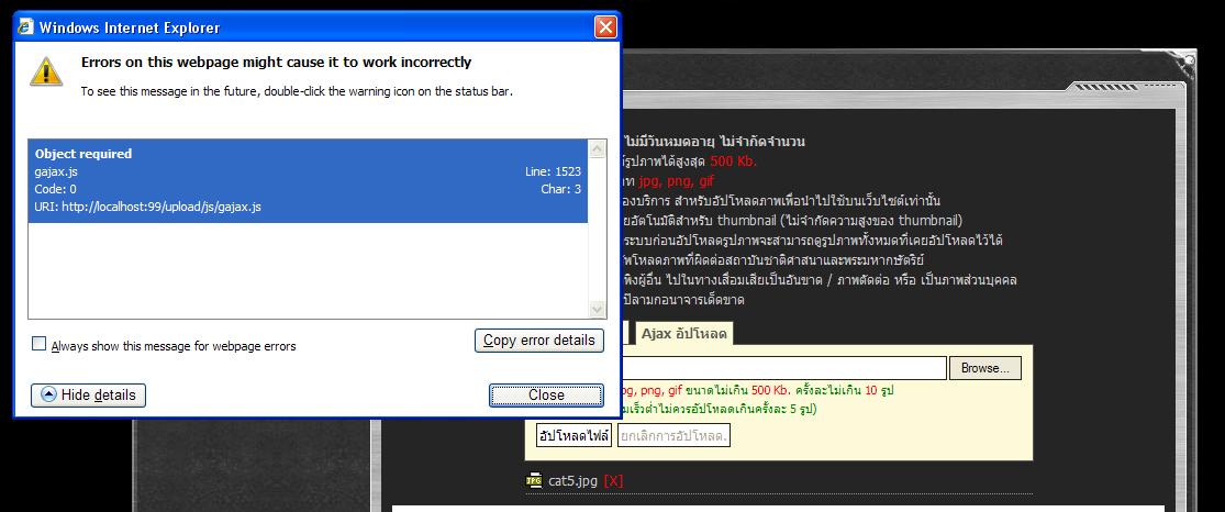 ทดสอบเว็บอัพโหลดแล้วมี Error ครับ
